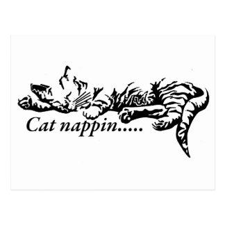 Nappin do gato .......... cartão postal