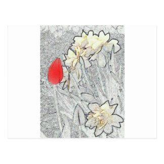 narciso anti-glamoroso cartão postal