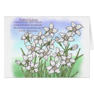 Narciso Cartoes