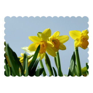 Narciso Convite 12.7 X 17.78cm