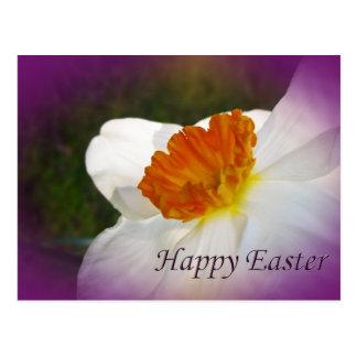 Narciso do felz pascoa - beleza da primavera cartao postal