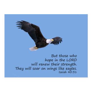 Nas asas goste do cartão de Eagles
