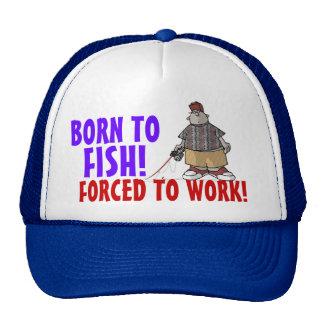 Nascer ao boné dos peixes