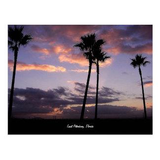 Nascer do sol, cartão de St Petersburg, Florida
