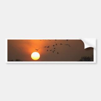 Nascer do sol com rebanhos de guindastes do vôo adesivo de para-choque