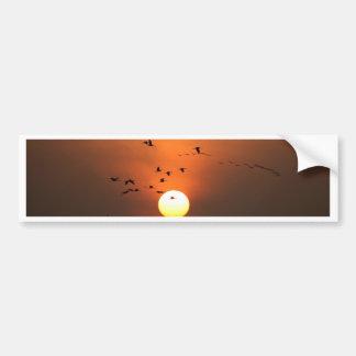Nascer do sol com rebanhos de guindastes do vôo adesivo para carro