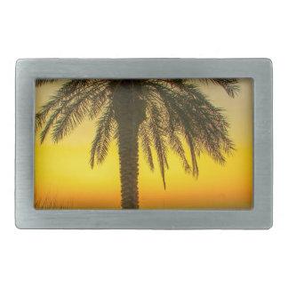 Nascer do sol da palmeira
