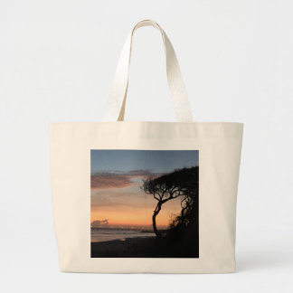 Nascer do sol da praia através do bolsa das