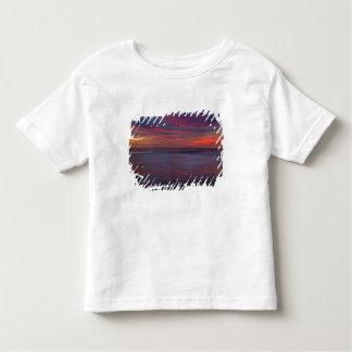 nascer do sol Roxo-colorido na costa do oceano Camisetas