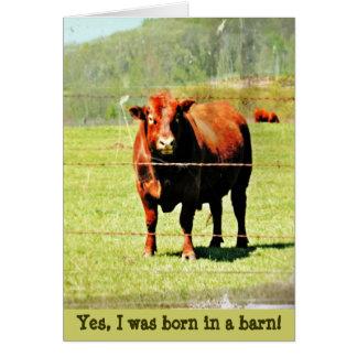 Nascer em um cartão do dia das mães do celeiro