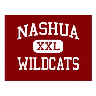 Nashua - Wildcats - católico - Nashua Cartoes Postais