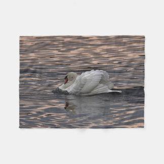 Natação da cisne no por do sol cobertor de velo
