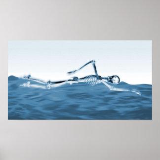 Natação de esqueleto do raio X no azul do lago Pôsteres