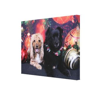 Natal - Cocker de Labrador X Cheyanne X Sundance Impressão De Canvas Esticada