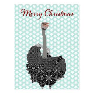Natal do cartão da estrela azul da avestruz cartoes postais