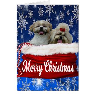 Natal do cartão do tzu de Shih