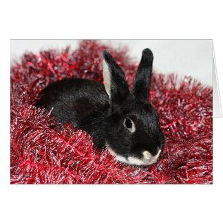Natal do coelho cartão