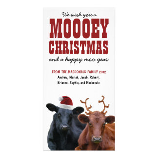 Natal engraçado de Mooey do casal da vaca do feria Cartão Com Foto