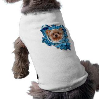 Natal - flocos de neve azuis - yorkshire terrier camisa sem mangas para cachorro