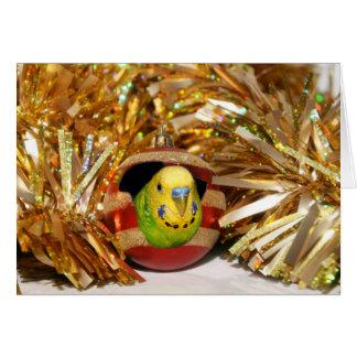 Natal impertinente do parakeet cartão
