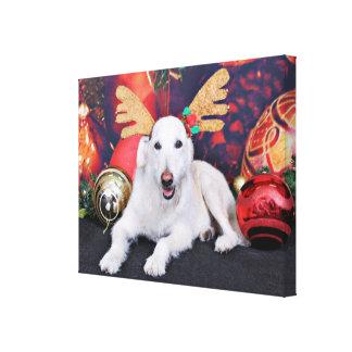 Natal - LabraDoodle - Izzy Impressão De Canvas Envolvidas