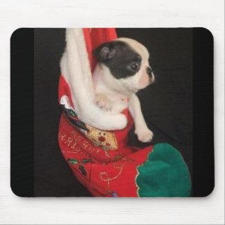 Natal Mousepad do filhote de cachorro de Boston Te
