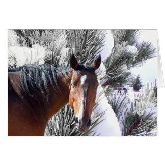 Natal ocidental do amante bonito do cavalo cartão de nota