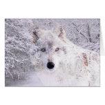 Natal ou lobo do inverno cartão comemorativo