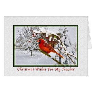 Natal, professor, pássaro cardinal, neve, cartão