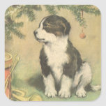 Natal vintage, cão de filhote de cachorro bonito adesivos quadrados