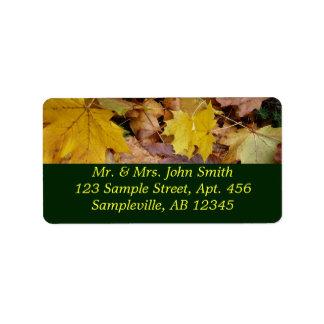 Natureza amarela caída do outono das folhas de etiqueta de endereço