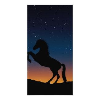 Natureza animal do cavalo cartão