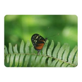 Natureza da borboleta convite personalizados