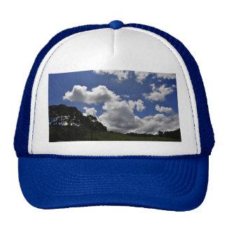 Natureza da paisagem do céu das nuvens bone