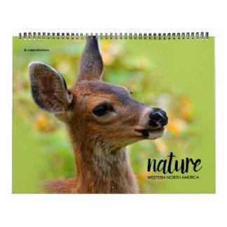 Natureza do calendário ocidental de America do