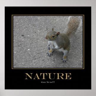 Natureza - loucos obtidos? poster