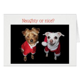 """""""Naughry ou agradáveis?"""" Cartão de Natal com cães"""