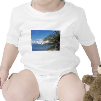 Navio de cruzeiros camisetas
