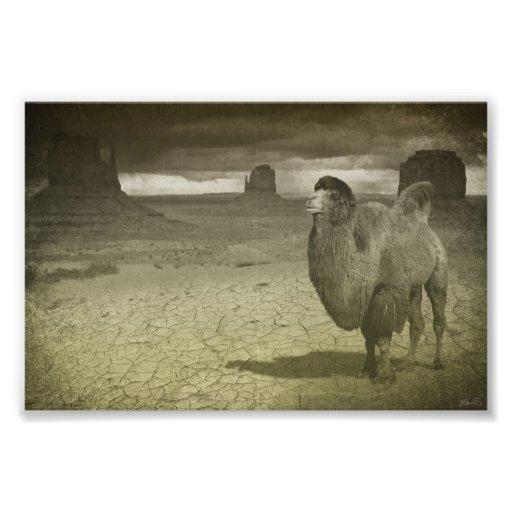 Navio do deserto foto arte