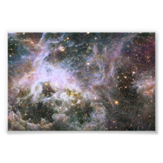 Nebulosa cósmica do Tarantula do inseto rastejador Impressão Fotográfica