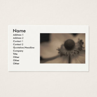 Negócio & cartões de visitas da anêmona do vintage