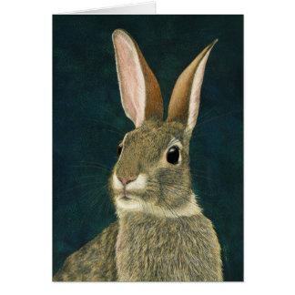 """""""Nenhum cartão do coelho dos truques"""" -"""