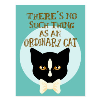 Nenhuma coisa como um gato ordinário cartão postal