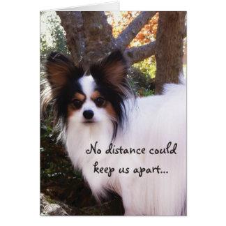 NENHUMA distância podia manter-nos cartão separado