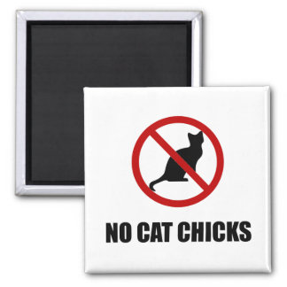 Nenhuns pintinhos do gato imã