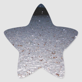 Neve do sul adesito estrela