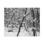 Neve na foto preto e branco das árvores em canvas impressão de canvas envolvidas