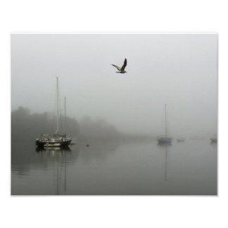 Névoa da manhã com impressão da foto dos veleiros