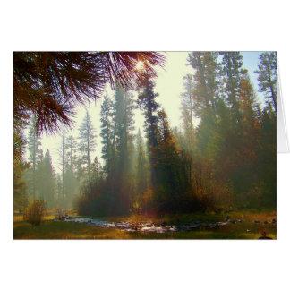 Névoa da manhã no cartão da foto de North Fork