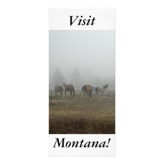 Névoa gelado da manhã, cavalos, visita Montana! 10.16 X 22.86cm Panfleto